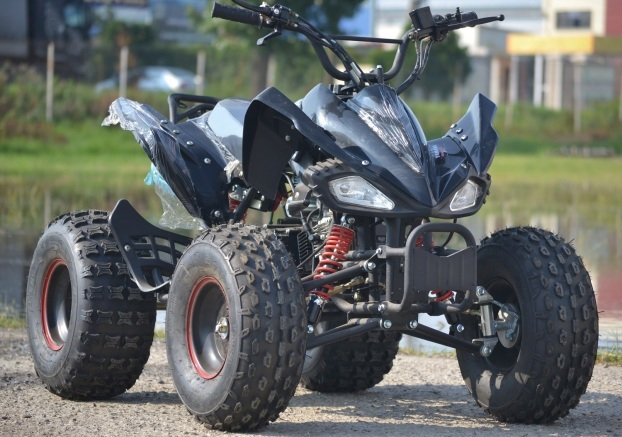 Model: Raptor Quad KXD-004 anv